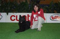 Troya en el torneo de agility de TV Cuatro Semana Santa 2007